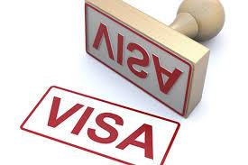外国人申请的越南签证有哪些种类?